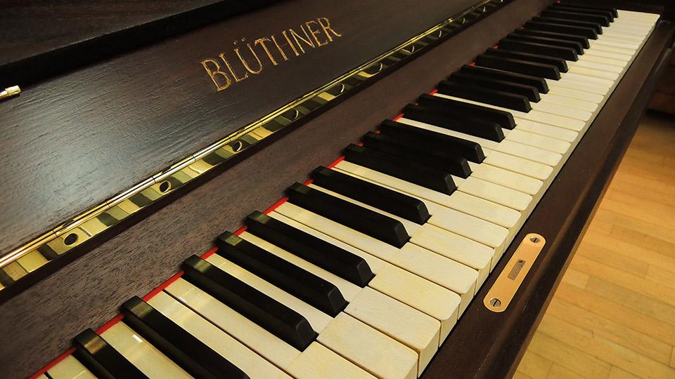 Bluethner-04
