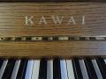 KawaiCE-10N-002