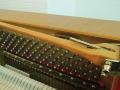 Schimmel-112-Kirsch-012