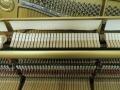 YamahaU1-05